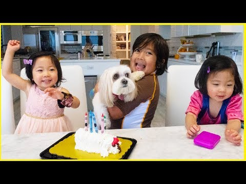 surprise-dog-birthday-ella-with-ryan's-family-review!!!