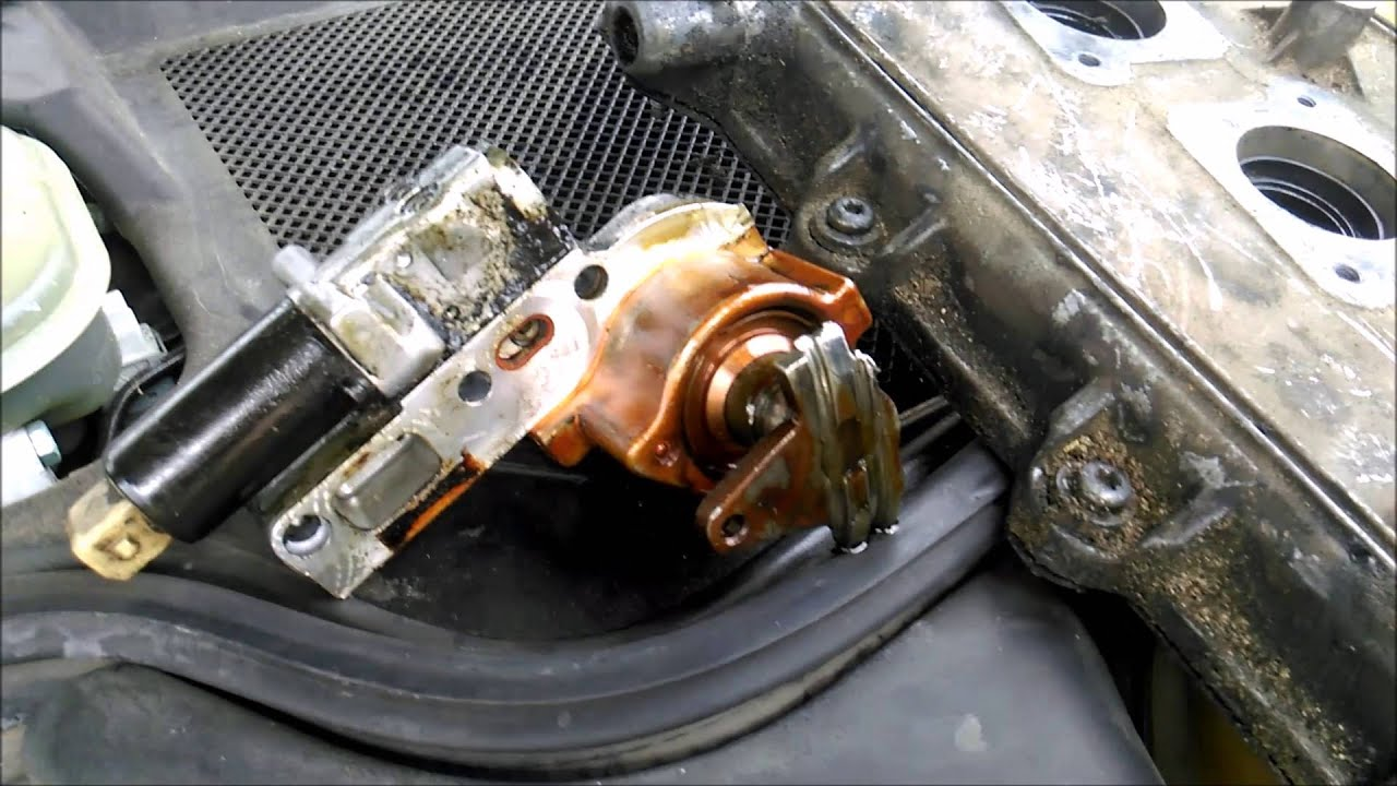Audi A8 42l Timing Chain Cam Tensioner Ticking Tapping Sound Youtube Vw 2 0 L Engine Belt Diagram