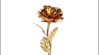 Rick Ross - Gold Roses Ft. Drake | Port of Miami 2 | New Rick Ross Type Beat | Gold Roses Type Beat
