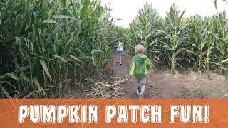 PUMPKIN PATCH FUN - MORTIMER FARMS - 2016