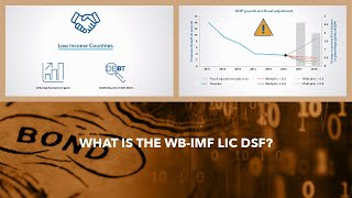 What Is The WB-IMF LIC DSF?