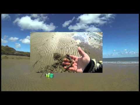 Sea Fishing Lligwy Anglesey April 2016.