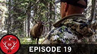 4Yards, Frontal, and Furious! Corey's 2019 Idaho Bull (Destination Elk V2: Episode 19)