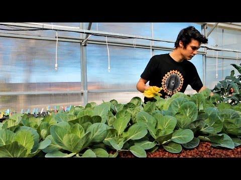 How Gardening Enables Interdisciplinary Learning