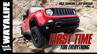 FIRST TIME : Lifted Jeep Renegade Trailhawk & Stock JK Wrangler Rubicon on the Rocks