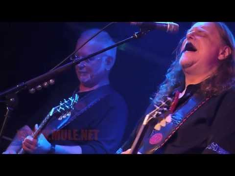 GOV'T MULE - Rockin' in the Free World - London 2013