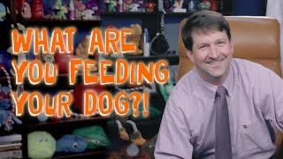 Are You Feeding Your Dog Crap?