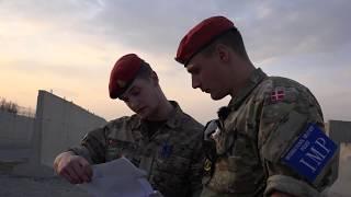 Militærpoliti og narkohund i aktion i Kabul