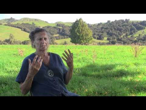 Interview with Kay Baxter of Permaculture Research Institute of New Zealand and the Koanga Institute