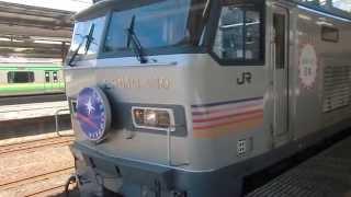 JR宇都宮線・高崎線 大宮駅で撮りました。 この電車は、寝台特急カシ...