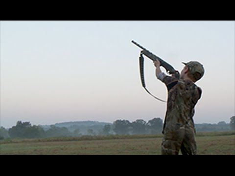 Arkansas Dove Hunting