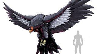 Топ 10 гигантских птиц планеты