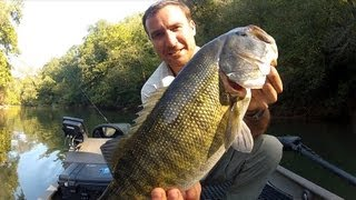5 Pound Shoal Bass River Fishing