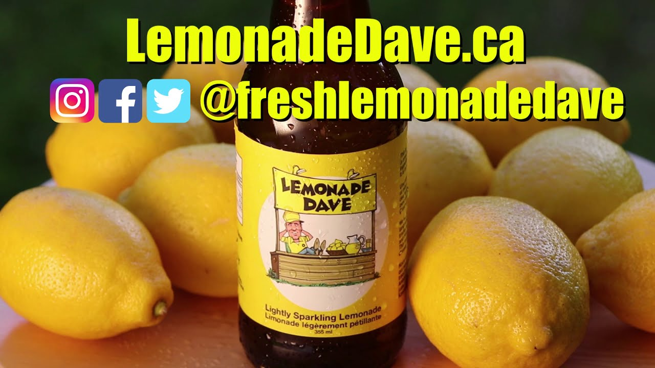 Lemonade Dave Commercial - Annelise Noronha