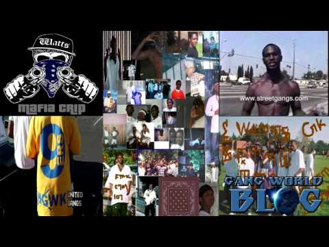 Mafia Crip Gangs of Los Angeles