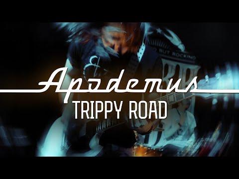 Apodemus — Trippy Road (live @ Джао Да 13.01.2019)