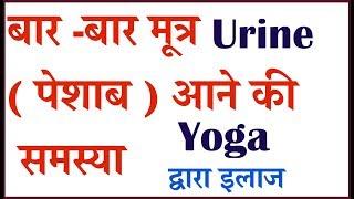 बार -बार मूत्र Urine ( पेशाब )आने की समस्या | Yoga द्वारा इलाज | Problem of frequent urination