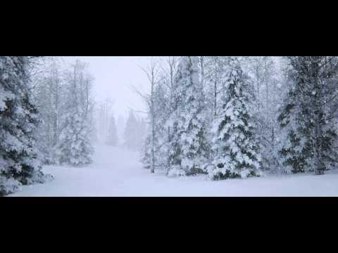 UE4 SpeedTree - Snow
