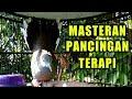 Suara Burung Perkutut Cocok Untuk Masteran Terapi Dan Pancingan  Mp3 - Mp4 Download