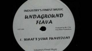 Undaground Flava - What