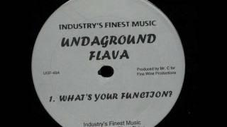 Undaground Flava - What