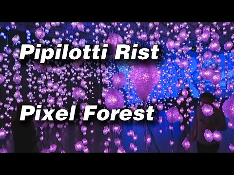 Pipilotti Rist - Pixel Forest - New Museum - Preview