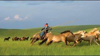 Mongolia - Armand Amar