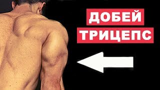 Упражнения На Добивку Трицепса В Конце Тренировки (Суперсет) | Джефф Кавальер