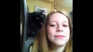 Приколы с кошками ПРикольный видосик)