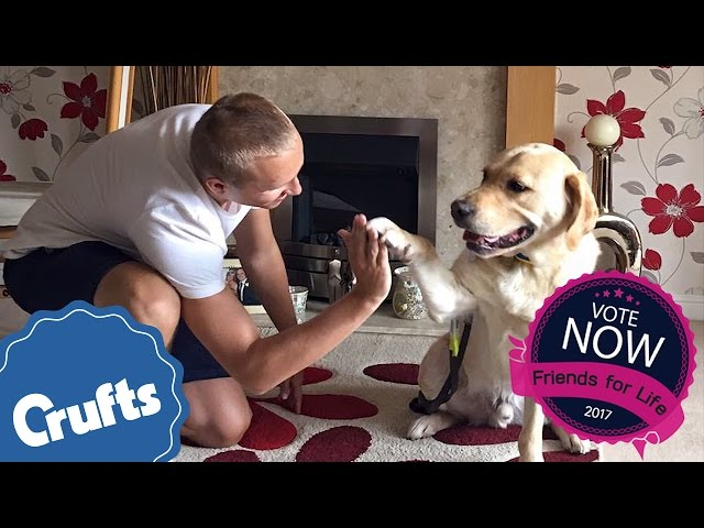 Nathan and Hudson | Eukanuba Friends For Life Finalists 2017
