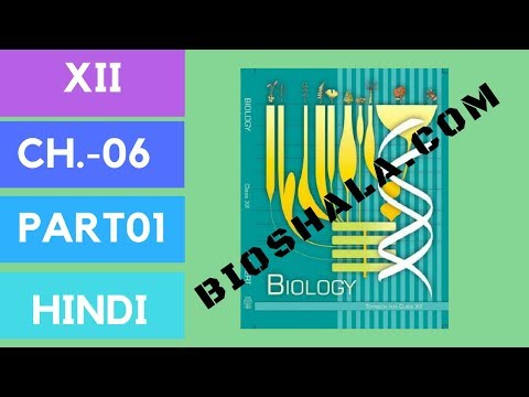 Chapter 6: Molecular basis of inheritance (NCERT level/ HINDI) Part1