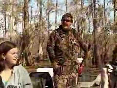 Cajun Swamp - Lake Martin in Louisiana