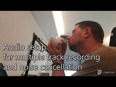 Audio setup for multiple track recording and noise cancellation