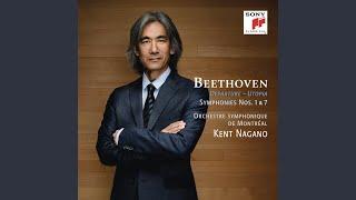 III. Menuetto - Allegro molto e vivace
