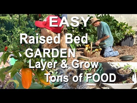diy-raised-bed-how-to-build-set-up-grow-vegetable-food-garden-in-totes-layer-pot-plants-small-spaces