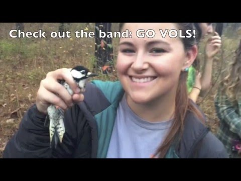2015 University of Tennessee Wildlife and Fisheries Fall Camp