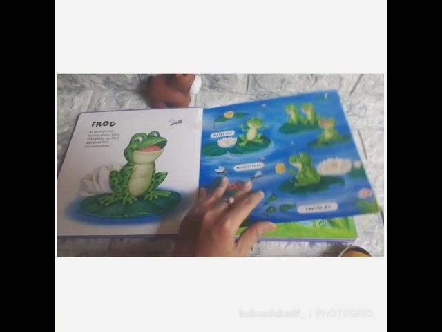 Talking plush animala frog's pond book