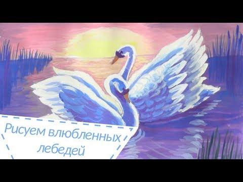 Как нарисовать лебедей на озере поэтапно