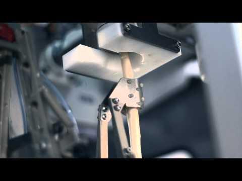 Industrie-Spargelschälmaschine HSM-3000 | HEPRO®