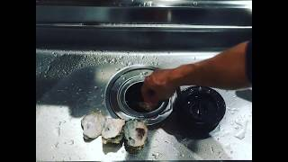 ディスポーザー粉砕動画