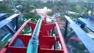 ZOO PARQUE INCRÍVEL! ★ Tour e animais no Busch Gardens Park em Tampa, FL (Tour em Orlando VLOG #14)