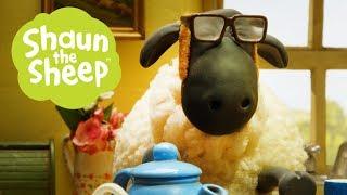 Người nông dân với chú cừu - Những Chú Cừu Thông Minh [Sheep Farmer - Shaun the Sheep]