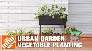 How To Plant Vegetables For An Urban Garden - The Home Depot
