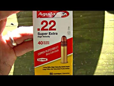 Aguila 22LR Ammo Testing - My Experience