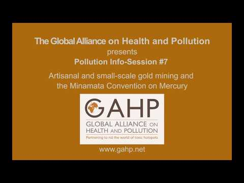 Pollution Info Session #8: Artisanal & small-scale gold mining & the Minamata Convention on Mercury