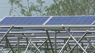 농사도 짓고 전기도 생산하는 태양광 발전 시설 / YTN 사이언스