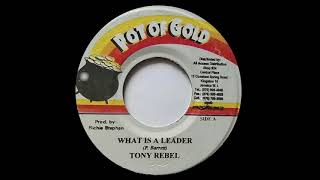 Download TONY REBEL - What Is A Leader (2002) Pot Of Gold MP3 song and Music Video