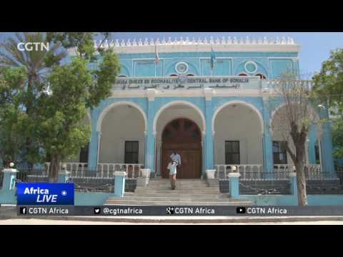 Mobile transactions improves business landscape in Somalia