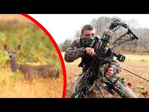 Whitetail Deer Stalk - 60 Yards