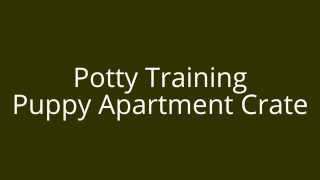 Potty Training Puppy Apartment Crate | Free Mini Course